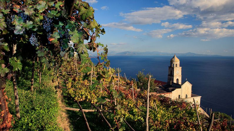 The Amalfi Coast, the paradox of the terroir