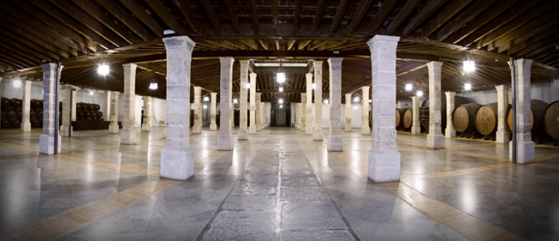 Spectacular picture of the Los Apóstoles bodega supported by 56 columns