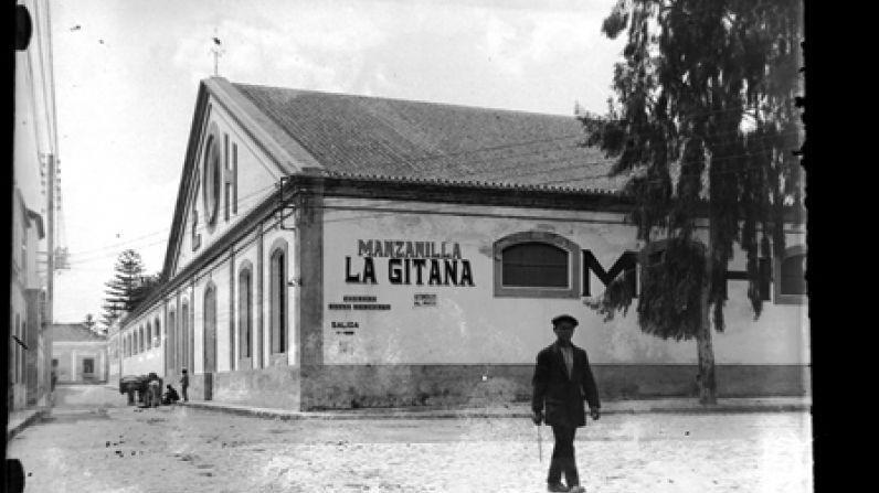 HIDALGO LA GITANA. MANZANILLA AND SALT