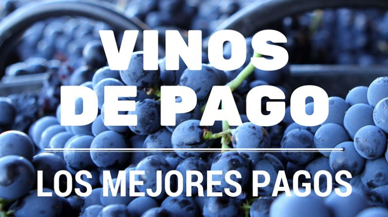 The best Single Estates of the Single Estate Wines