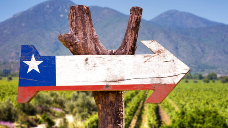 Chilean Wineries allowed to operate under Covid-19 lockdown