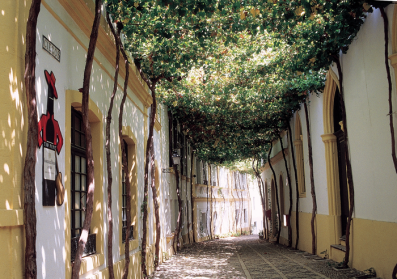 Calle Ciegos, in Jerez de la Frontera, owned by González Byass