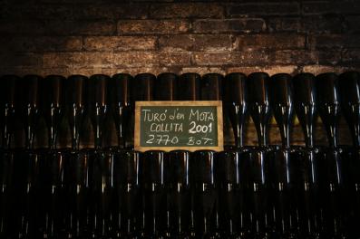 Cava bottles Turó d'en Mota, Recaredo