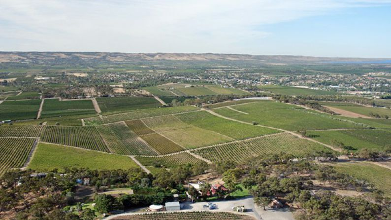 Arenberg - Aerial shot of d'Arenberg property with Willunga hills in background