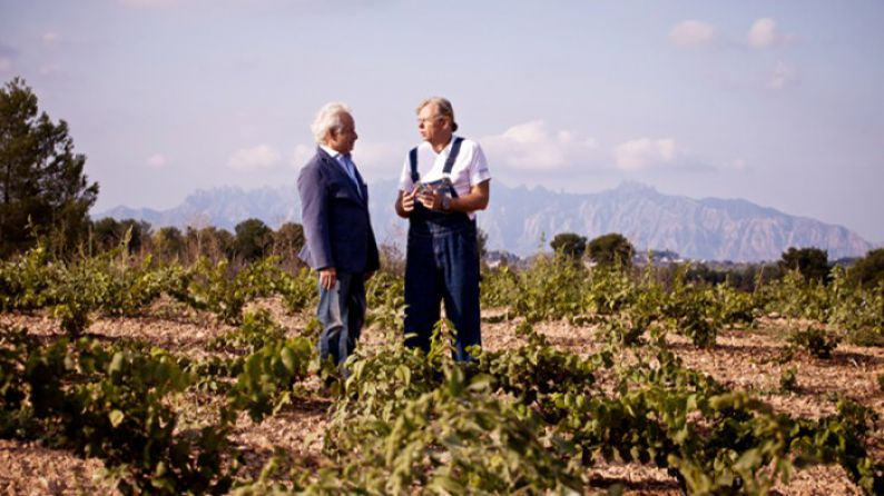 Jaume and Xavier represent the 5th generation to run the family winery