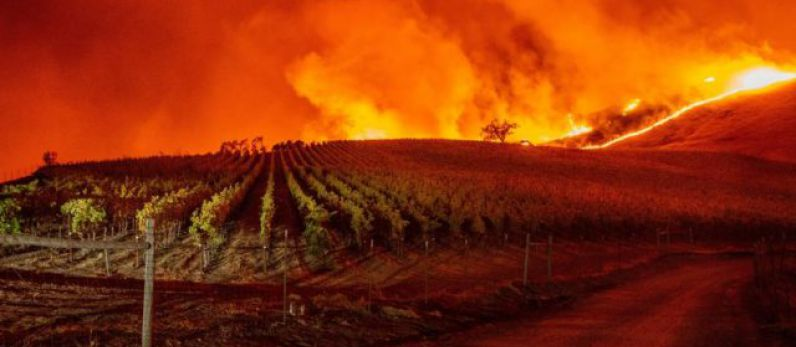 State of emergency declared in California Over Wildfire