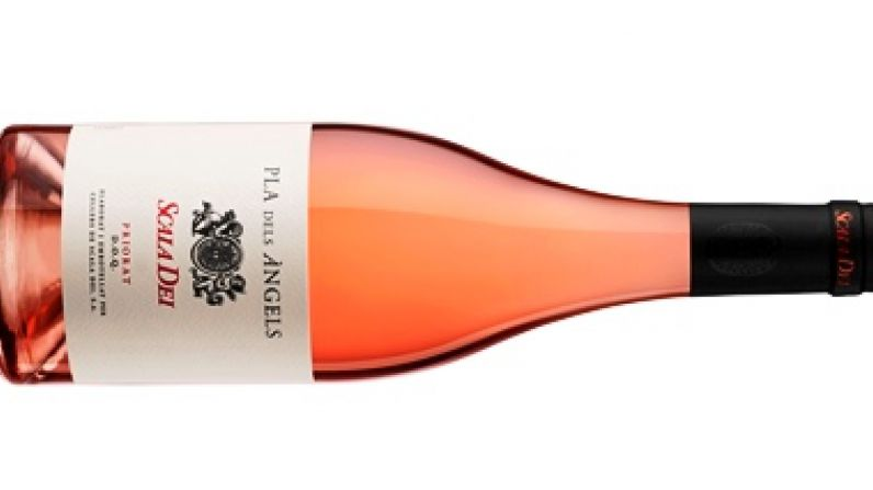 Scala Dei Pla dels Àngels 2020, mejor rosado de España y reelegido como uno de los mejores rosados del mundo.