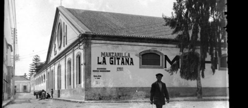 HIDALGO LA GITANA. LA MANZANILLA Y LA SAL