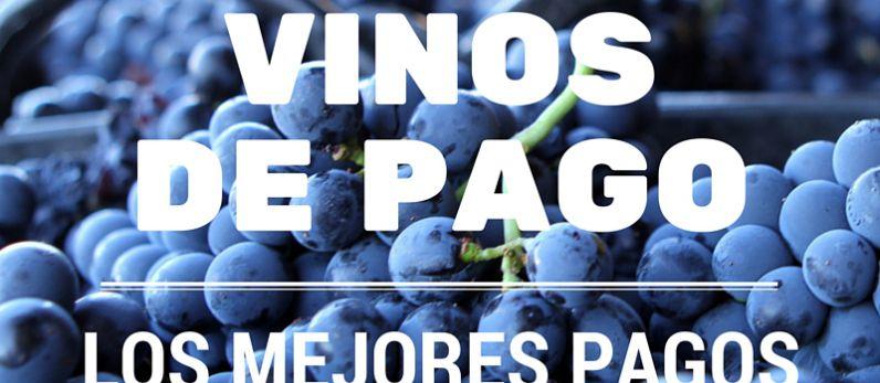 Los mejores Pagos de los vinos de Pago