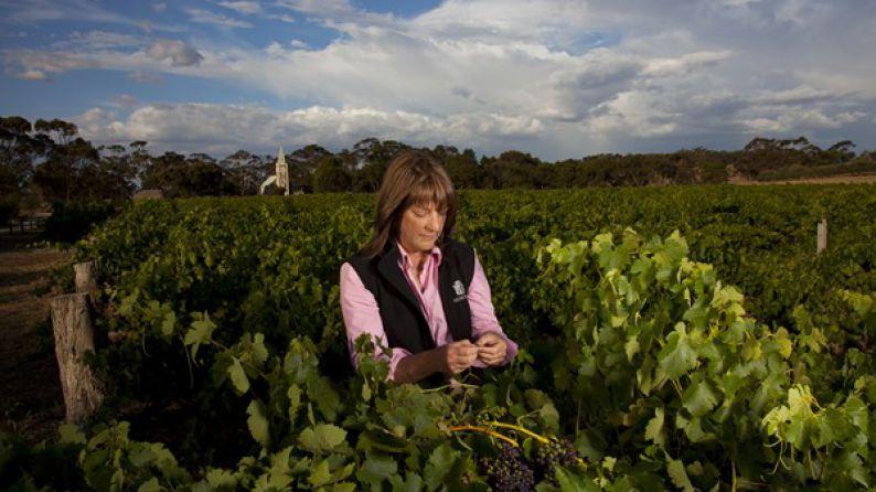 Prue Henschke, viticultora