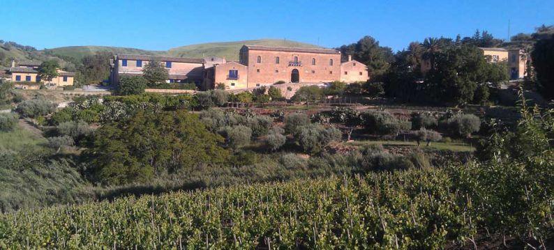 Sicilia, viñedos