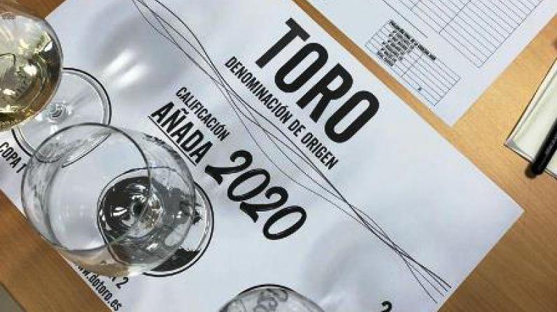 """La añada 2020 de la D.O. Toro es calificada como """"Excelente"""""""