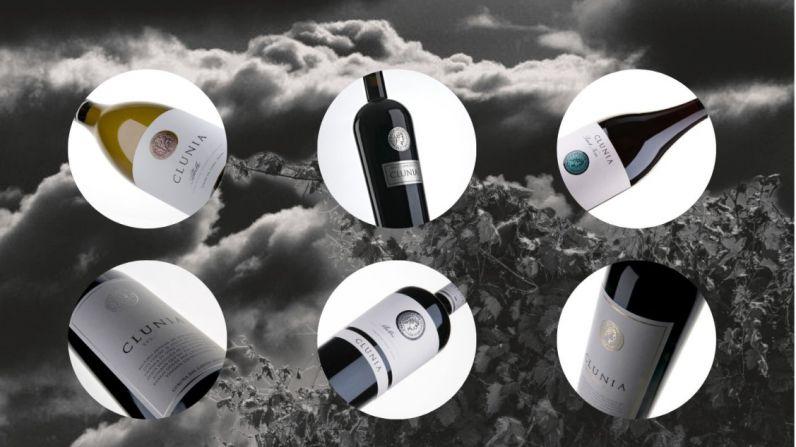 Los vinos de Clunia, en Top Wine Spain (Madrid Fusión 2020)