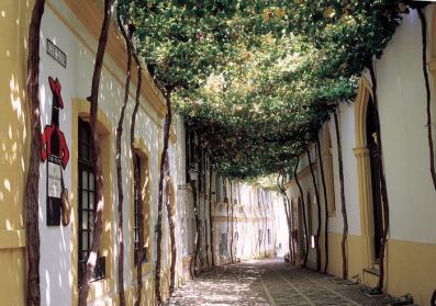 La calle Ciegos, en Jerez de la Frontera, es propiedad de la bodega González Byass