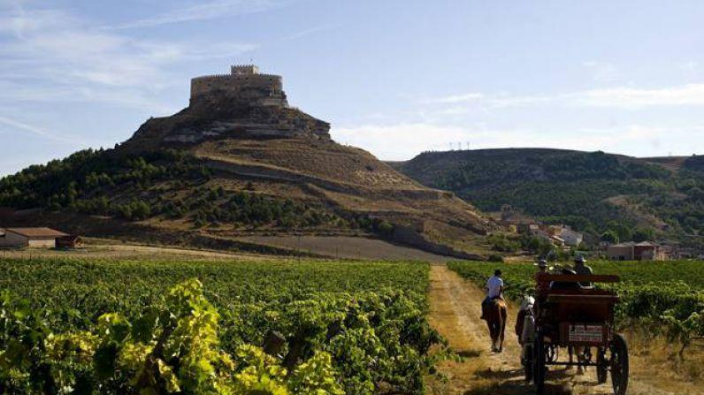 Entre castillos y paisajes de viñedos en la ruta del vino Ribera del Duero.