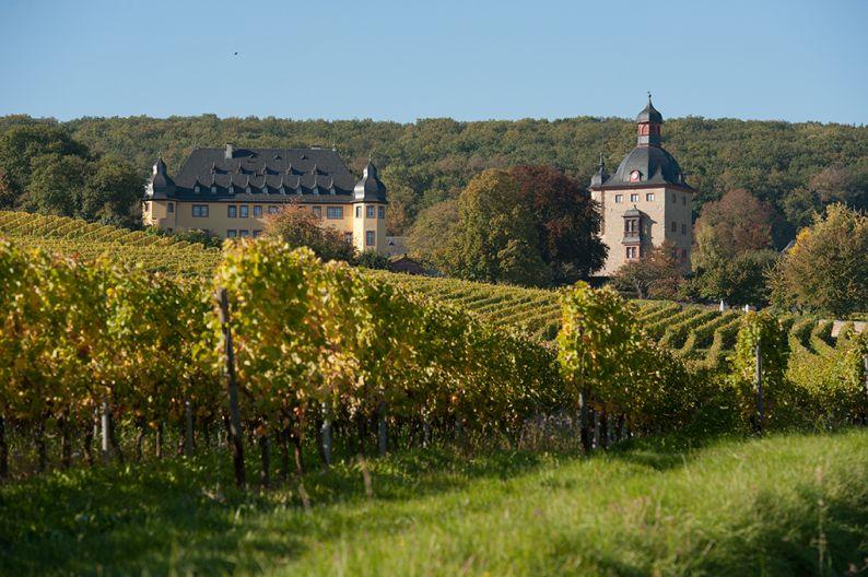 Schloss Vollrads Weingut