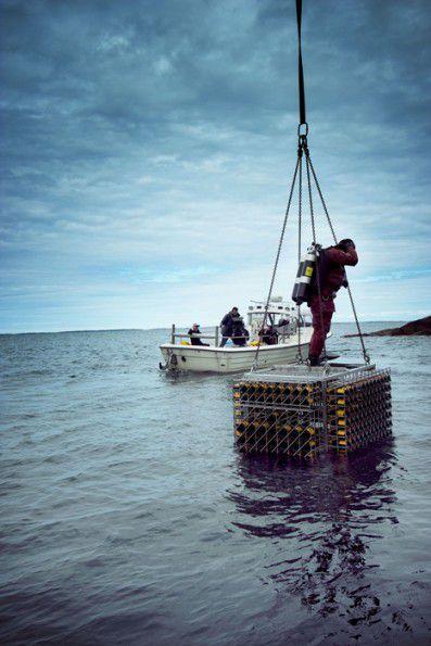 Un equipo de inmersión a punto de bajar botellas de Veuve Clicquot al fondo del mar
