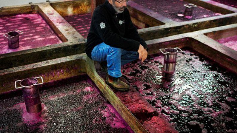 Stephen Henschke en los tanques de fermentación