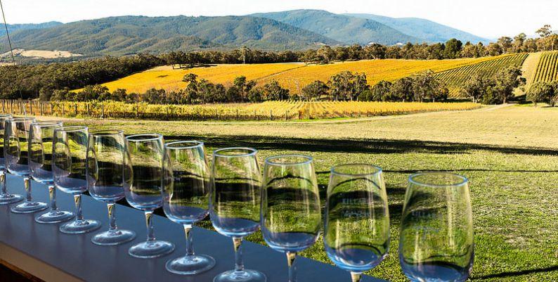 Cata de vino al aire libre