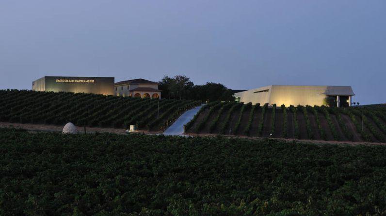 Pago de los capellanes, una de las mejores bodegas del mundo según Wine & Spirits Magazine.