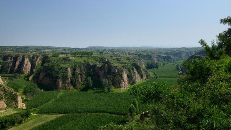 Valle con viñedos, en Taigu (Provincia de Shanxi, China)