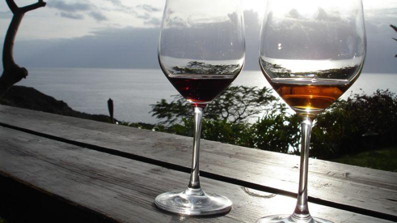 Dos vinos de la variedad malvasí