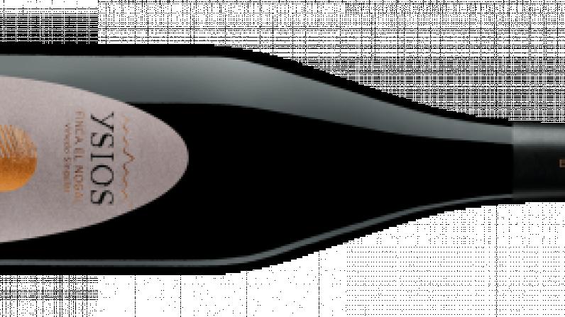 Ysios Finca El Nogal, un vino singular de un viñedo muy especial.