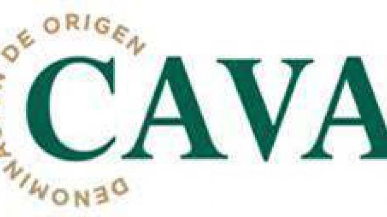 La D.O. CAVA se vuelca en asegurar el origen y cumplimiento de las exigentes normativas cualitativas de la vendimia, sin olvidar la pandemia.