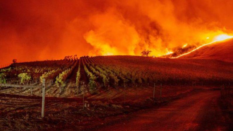 Declarado el estado de emergencia en California a causa de los incendios.